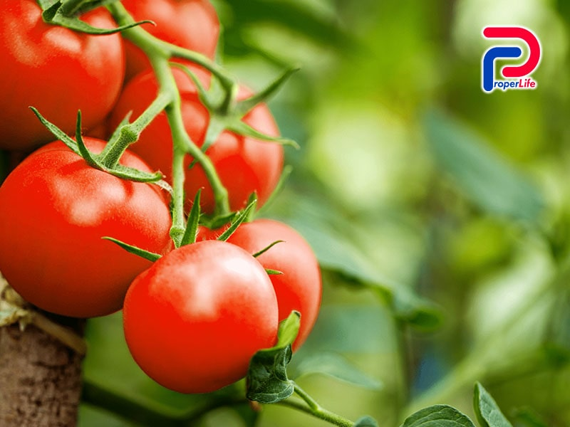 10 loại trái cây làm trắng da tự nhiên, hiệu quả